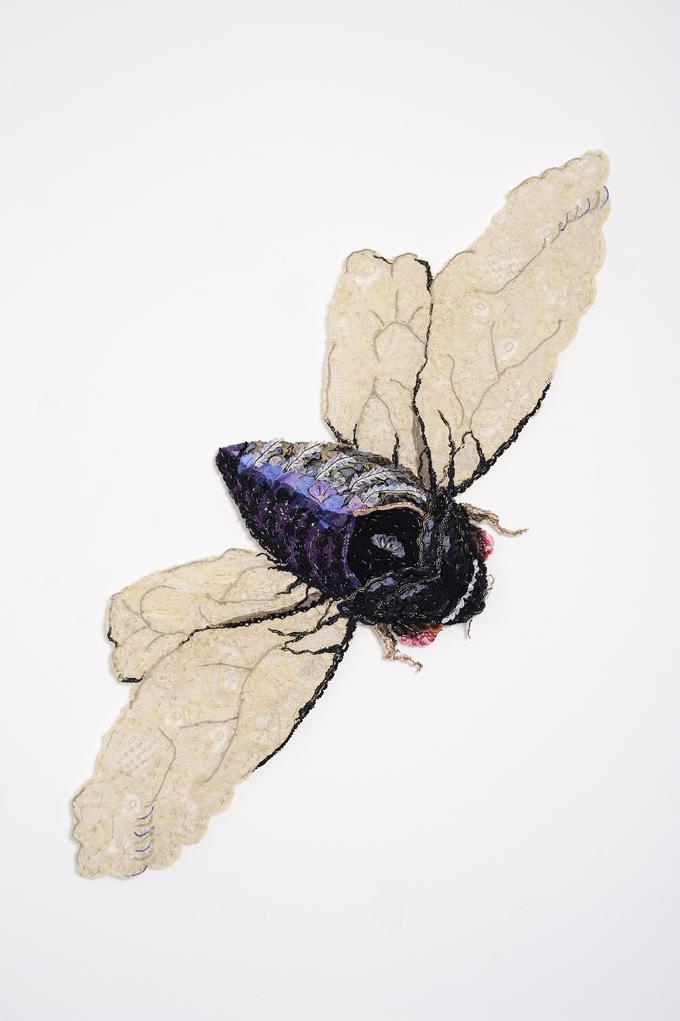 Black Prince 2011 after Louisa Anne Meredity c.1850